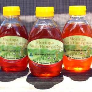 Moringa Bush Honey